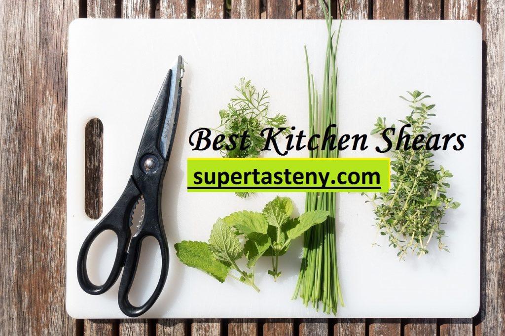 Best Kitchen Shears America's Test Kitchen